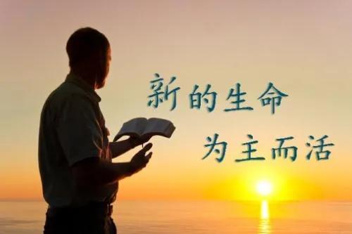 """献上你的""""信仰礼物"""",对众人作见证!"""